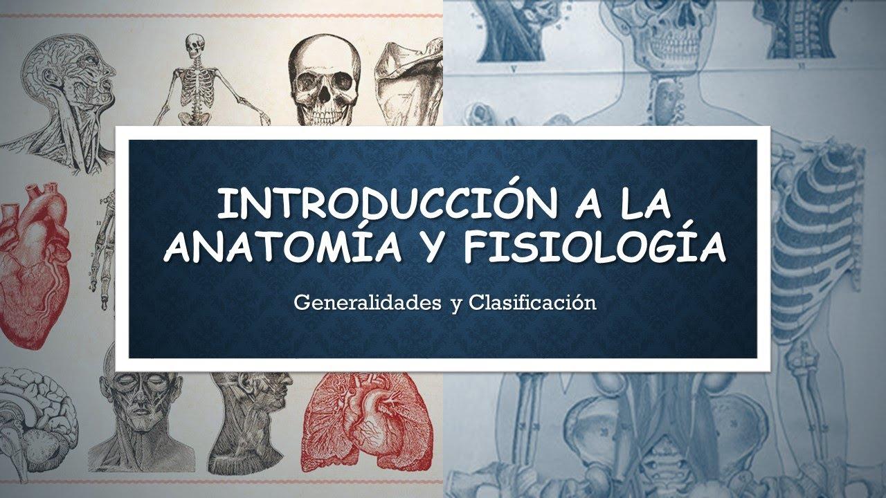 Tema 1 Introducción a la Anatomía y la Fisiología Humana - YouTube
