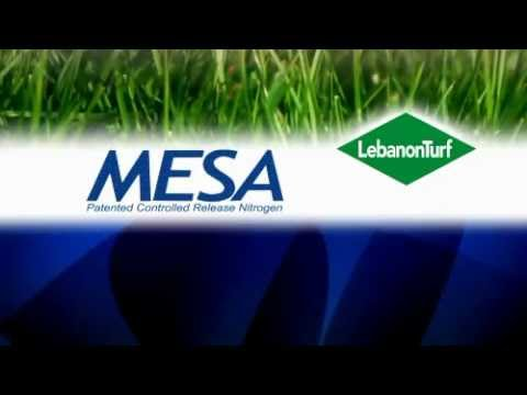 Fertilizer Grass Seed Weed Preventer Chemicals Lebanon Sharpe S