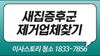 새집증후군피톤치드 새집청소업체 서산 서울입주청소 잘찾기