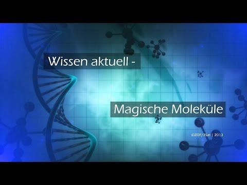 Wissen aktuell - Magische Moleküle   Doku
