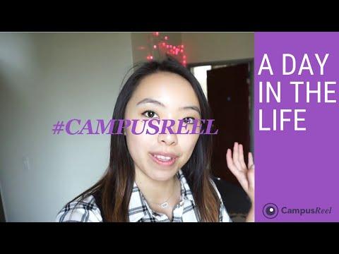 Rice University College Dorm Room Tour