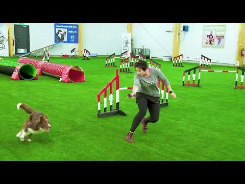 International Agility Training Week - Connection During the Forward Send - Preview