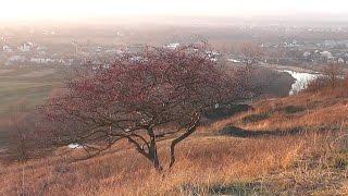 Вовчинецкий холм возле Ивано-Франковска.(Возле села Вовчинец находится Вовчинецкий холм - часть Покутской возвышенности площадью в 30 гектаров. Он..., 2016-04-07T09:00:00.000Z)