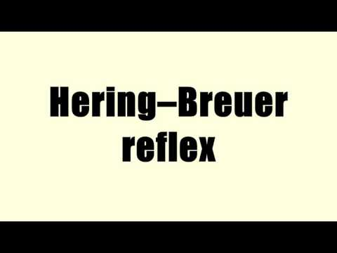 Hering–Breuer reflex
