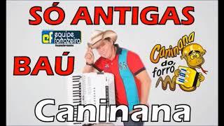 BAÚ Caninana do Forro SÓ ANTIGAS