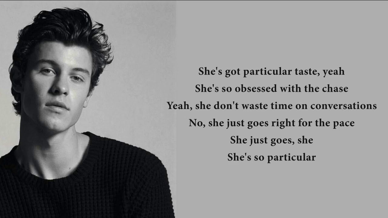 Shawn Mendes - Particular Taste (lyrics)