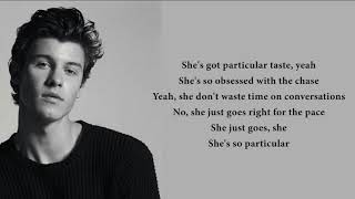 Shawn Mendes - Particular Taste (lyrics) thumbnail