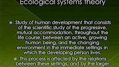 ecological systems theory social work