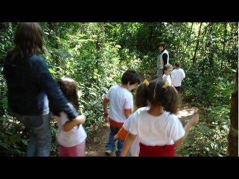 Educação Ambiental Infantil - Pedagogia de Projetos