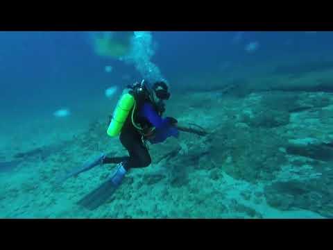 FollowMeCharter.com Spearfishing September 2017
