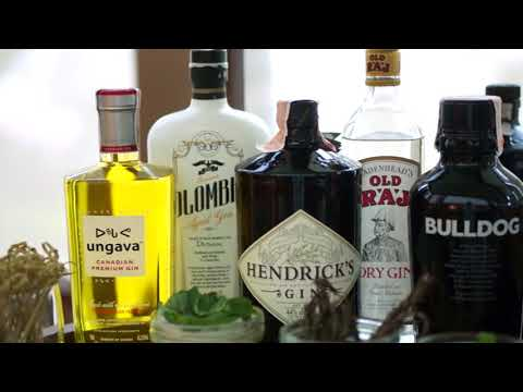 Gin All You Can at Discovery Primea