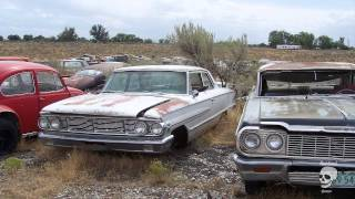 Old abandoned cars. Collection of abandoned classic cars