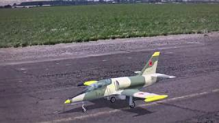RF8, Practicing for the Freewing,  L-39 Soviet Camo with Missles ???