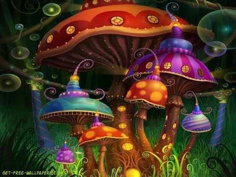 Nobody Knows Jack Shit About What is Going on (Psychedelics)