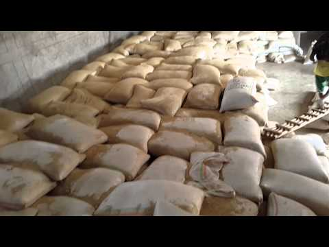 Tamrin sesame seed cleaning in Humera warehouse