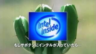 2005年 森岡龍 藤井美菜 もしもサボテンにインテルが入っていたら...