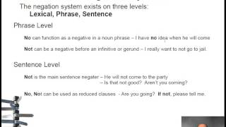 The Negation System