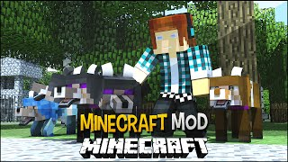 Minecraft Mod: Lobo Com 3 Cabeças !! ( 12 Diferentes Tipos de Lobos) - More Wolves Mod