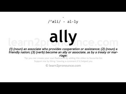 Ally Pronunciation And Definition
