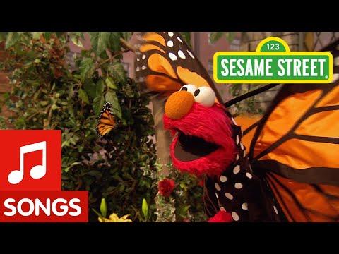 Sesame Street: Song: Little Butterfly Friend