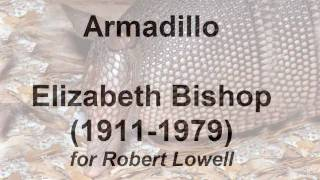 """The Armadillo"" by Elizabeth Bishop (read by Tom O"