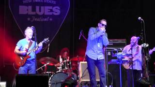 """""""Got Love If You Want It"""" THE KINGSNAKES  7/10/15"""