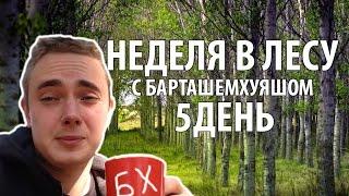 Неделя в лесу с БарташемХуяшом - день #5