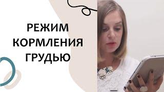 Выпуск 1. Кормить грудью ПО ЧАСАМ или ПО ТРЕБОВАНИЮ? Грудное вскармливание