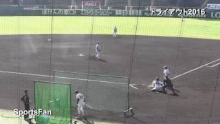 プロ野球合同トライアウト2016、甲子園球場で開催。新垣渚 (前 東京ヤク...