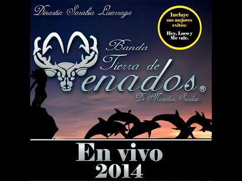 Banda Tierra de Venados - CD En Vivo 2014 completo ✔️