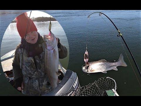 Рыбалка плавежом! Часть