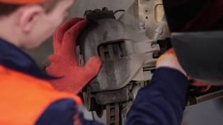 Wie SEAT EXEO (3R2) Bremszangenhalter austauschen - Video-Tutorial