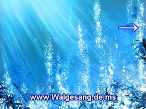 Unterwasser Musik
