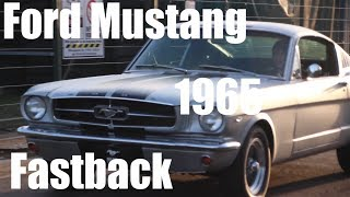 1965 Ford Mustang Fastback / V8 289cui / Car for Sale