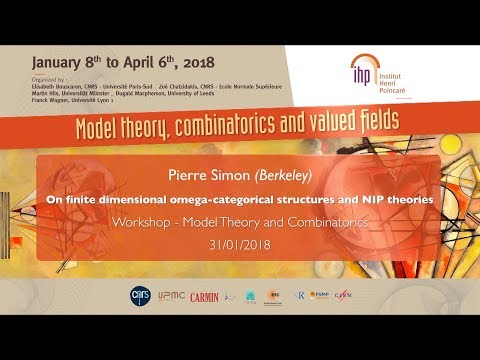 On finite dimensional omega-categorical structures (...) - P. Simon - Workshop 1 - CEB T1 2018