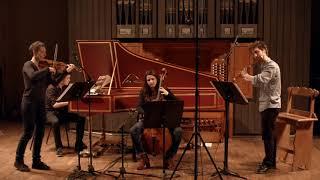 Telemann - 6e Quatuor - Vite