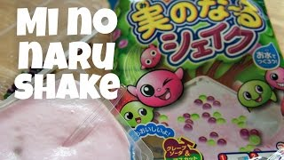 Mi no Naru Shake Japanese Candy - Whatcha Eating? #220
