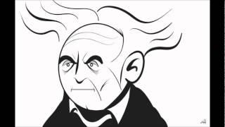 Arthur essay in in pessimism pessimism schopenhauer study study