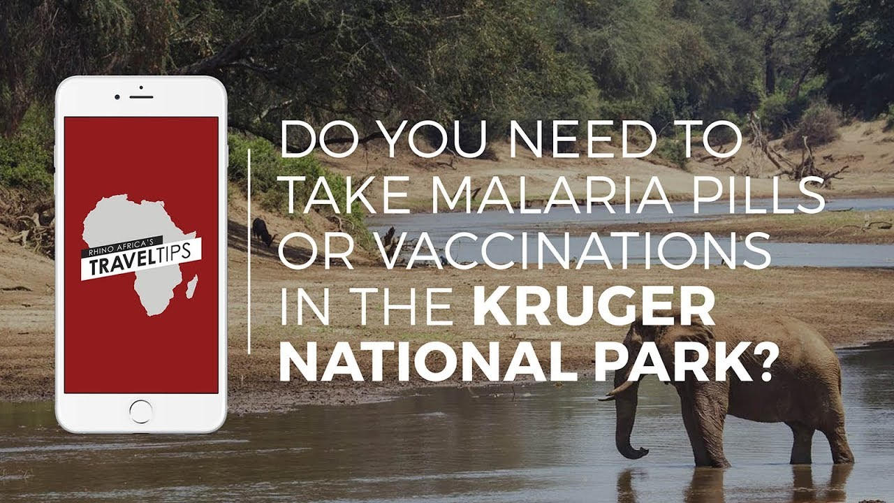 Do you need to take malaria pills in the Kruger National Park? Rhino  Africa's Travel Tips - YouTube