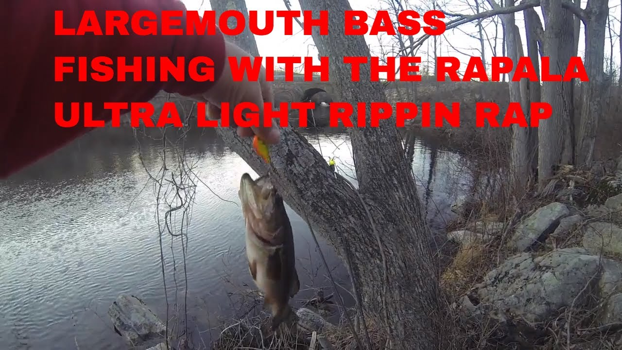Large mouth bass fishing in orange county new york 2017 for Fishing in orange county