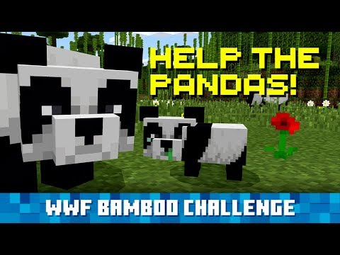 Plant Bamboo in Minecraft, Help Real-Life Pandas!