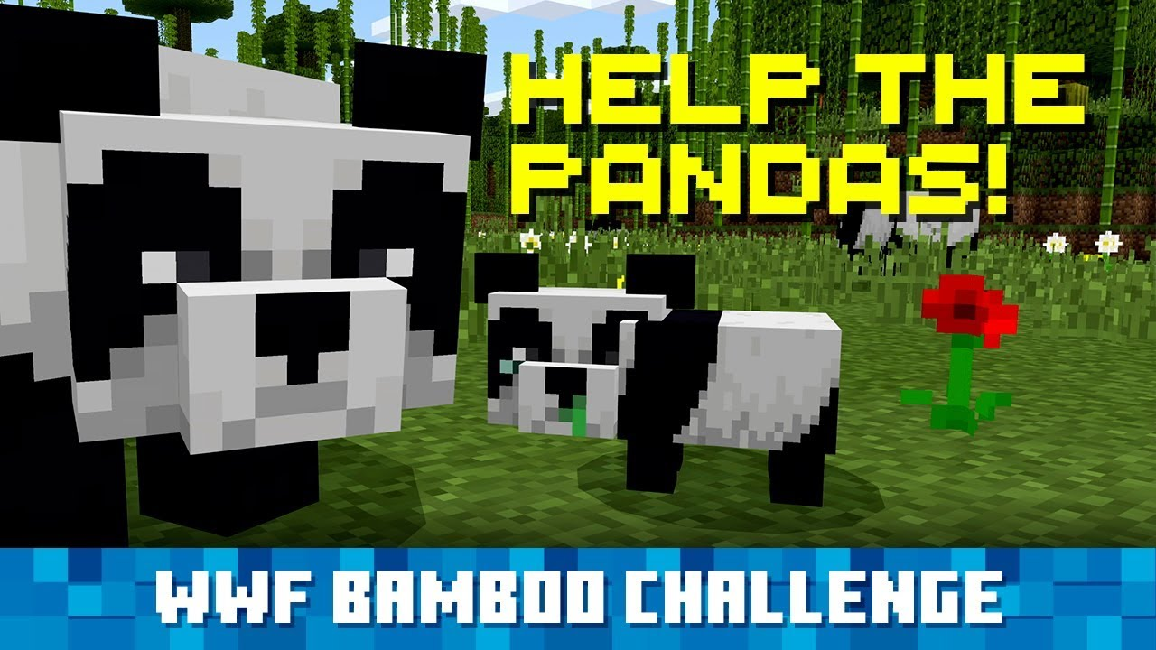 Plant Bamboo In Minecraft Help Real Life Pandas Youtube