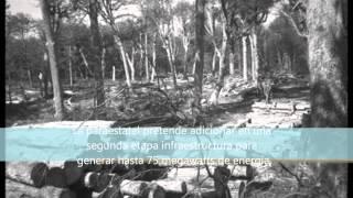 Geotermia en el Bosque la Primavera