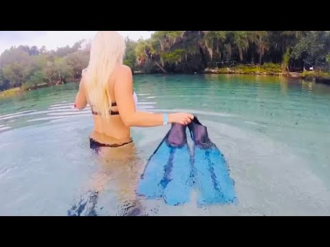 Exploring Underwater At Silver Glen Spring In The Ocala National Forest