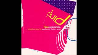Evolution & Lucien Foort - Fluid Compilation CD1 [HD]