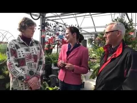 Amanda Eckart LIVE at Kunz Greenhouses in Port Jefferson Station