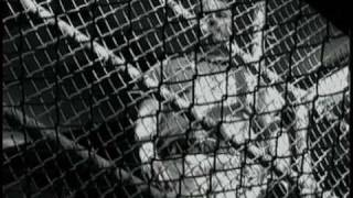 Inside the Walls- Corrections Documentary