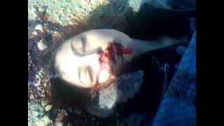 فتاة مجهولة الهوية مقتولة على طريق تل بيندر