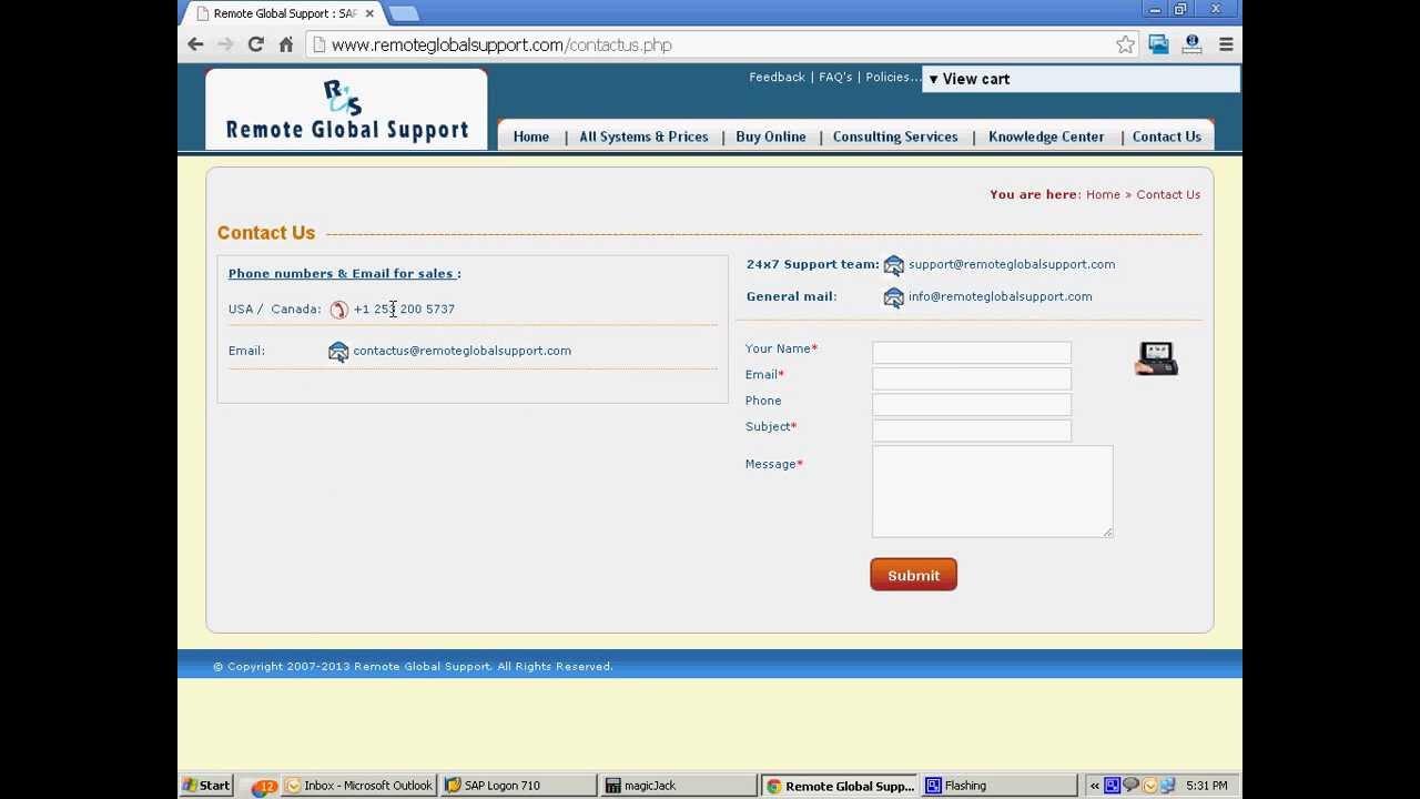 SAP Remote Access
