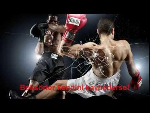 boksörler kendini kaybederse
